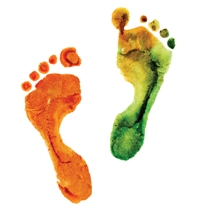 watercolor colorful footprint, on a white background